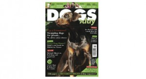 29 April Dogs Today