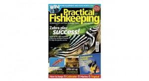 Practical Fishkeeping