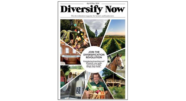 Diversify Now