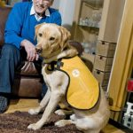 Ken and Kaspa from Life Changes Trust's Dementia Dog scheme