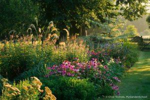 MyGardenSchool garden design image