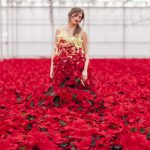 International Poinsettia Day - living poinsettia dress