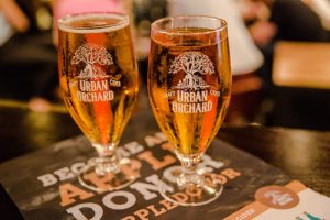 Lifestyle: Urban Orchard cider ready to sip