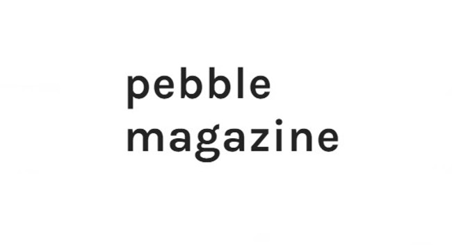 Image result for pebble magazine logo