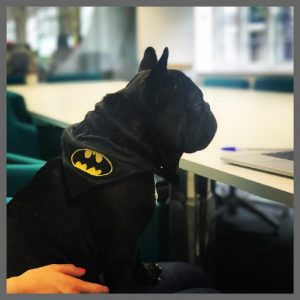 Kindred Agency - Batman