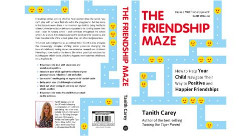 The Friendship Maze - cover